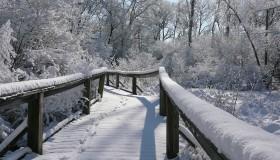 Winter Programs