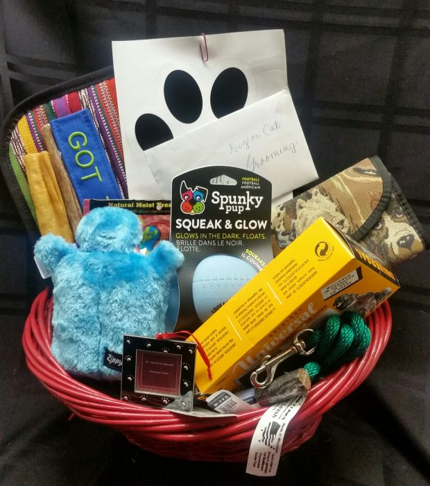 The Newest Auction Item Fur Baby Basket!
