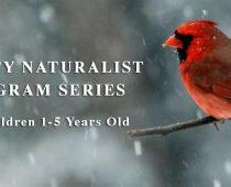 dahlem-mighty-naturalist-program-jackson