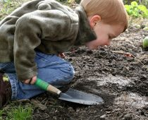 kid Finding life under leaf litter