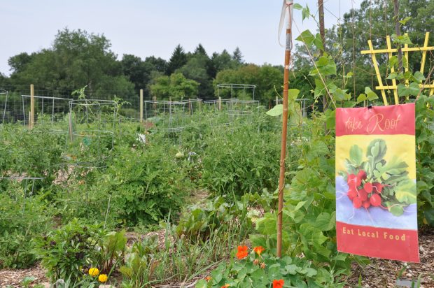 Community Gardens Open House